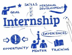 Learn more about Internship services!